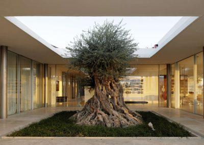 villa-bauhaus-fenster-design-minimalismus